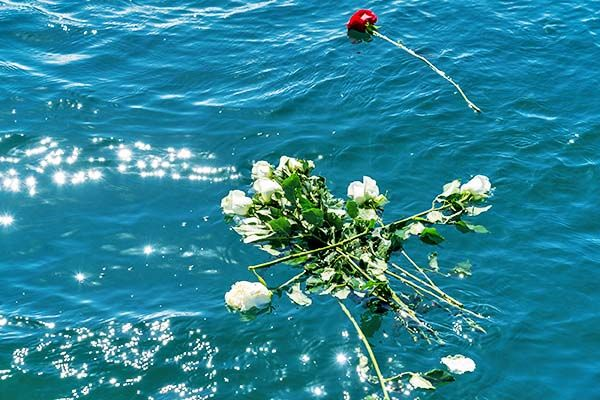 Individual flowers for sea burial